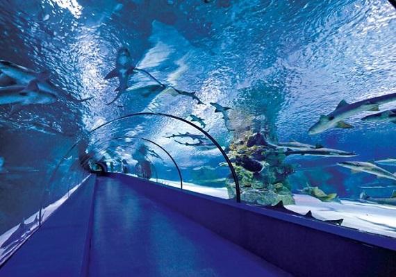 أنطاليا التركية عاصمة السياحة العالمية