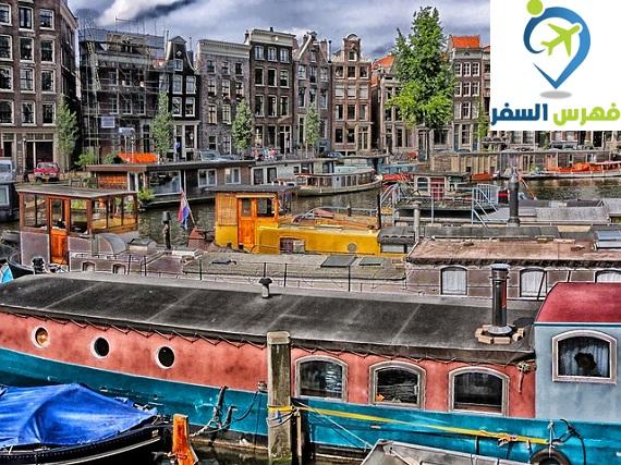 اللجوء في هولندا 2019 لليمنيين