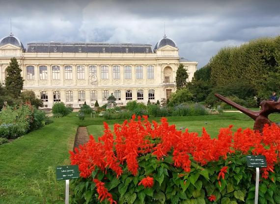 حديقة النباتات في مدينة باريس