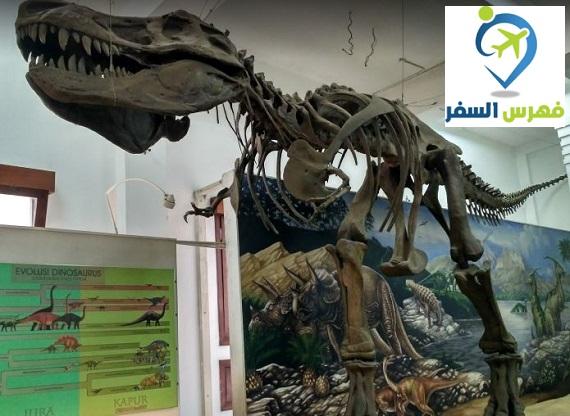 المتحف الجيولوجي في باندونق