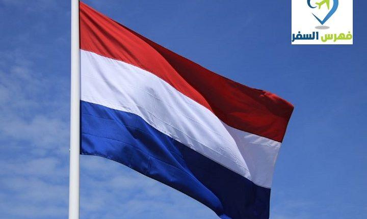 اللجوء الكنسي في هولندا